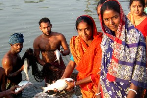 Bangladesh, women, fish, pond, project