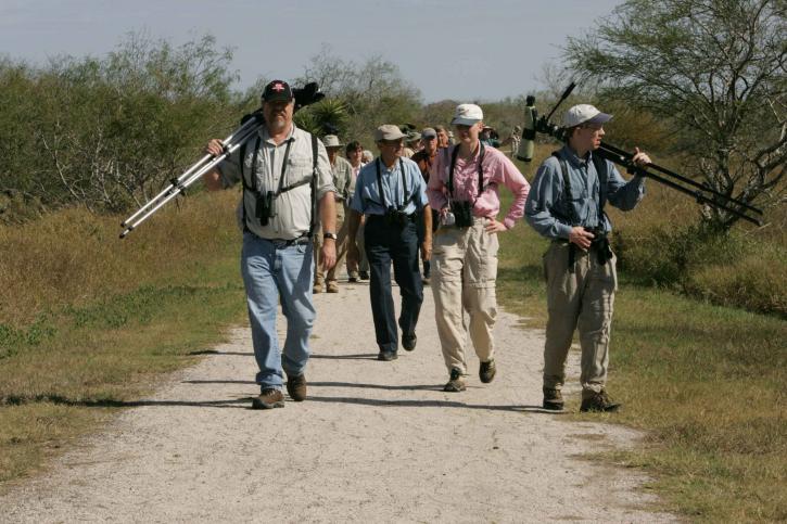 los observadores de aves, la búsqueda, el mejor, punto, vista