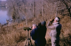 birdwatching, national park