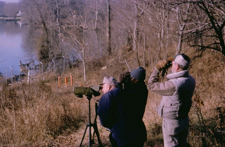 birdwatching, parc national