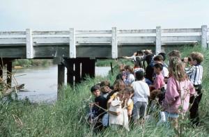 groupe, enfants, faune, pont