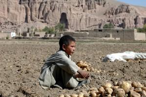 Afghanistan, ung gutt, barn, bakken
