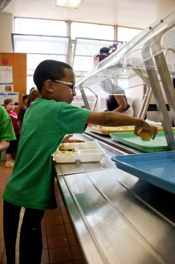 fiú, cafeteria, általános iskola