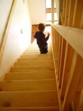 garçon, pin, escaliers