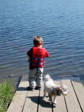 dječak, život, spasavanje, riba, gata, pas, u blizini