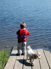 boy, life, preserver, fishes, pier, dog, near