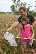 enfant, hommes, regarder, insectes, herbe
