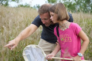 enfant, le père, les enfants, la nature, montré, regarder, insectes, herbe