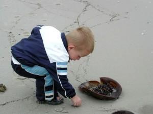 niño, juego, herradura, cangrejo