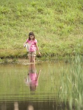 child, wading, water, net