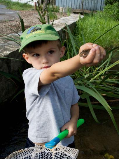 dijete, ribu, slatko, dječak, ribar