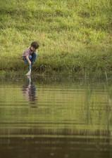 enfant, filet, attraper, aquatique, la vie