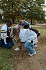 enfants, creuser, trous, plante, tulipe, fleurs