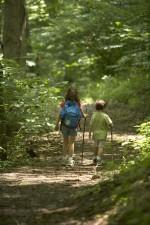 niños, senderismo, bosque