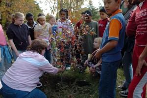 enfants, apprendre, plantation, arbres