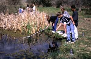 children, netting, pond