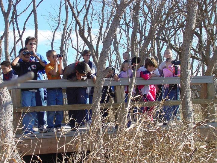 children, picnicking, countryside, enjoying, view