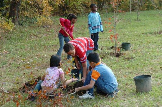 children, prepare, plant, trees
