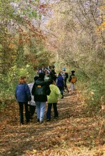 Kinder, Erholung, Wald, Umwelt, Bildung