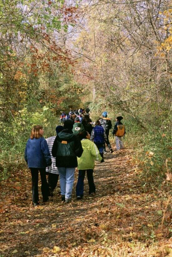 children, recreation, forest, environmental, education