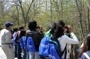 children, spot, birds, bird, watching, tour,