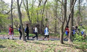 enfants, marche, forêt