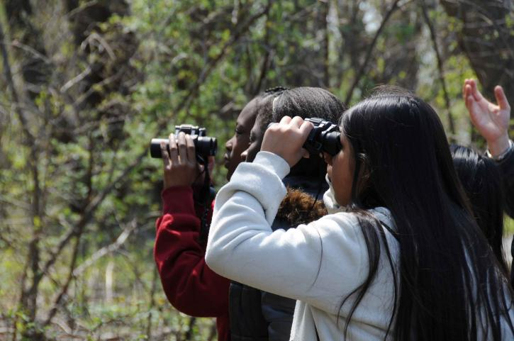 children, watch, binoculars