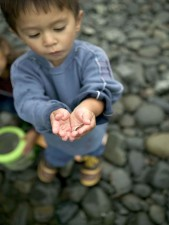 up-close, young boy enjoying, day, fishing, boy, holding, minnow, fish