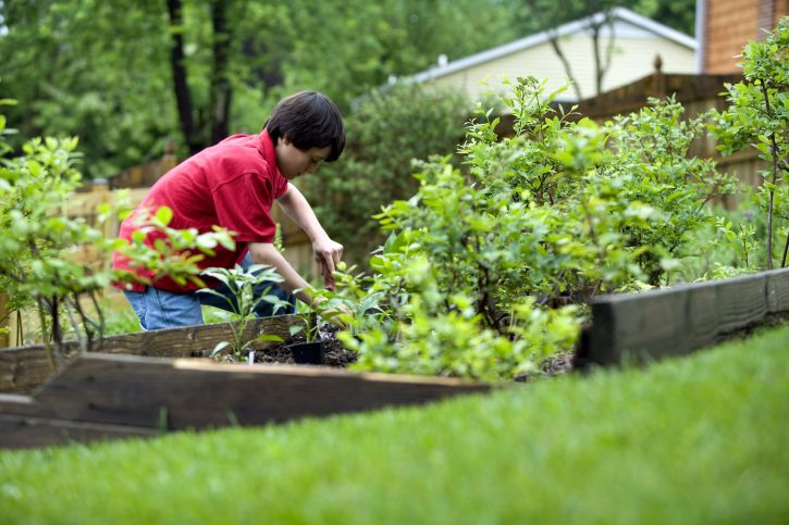 mignon, jeune garçon, jardinage, maison, arrière-cour