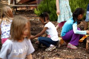 gardening, great, way, enjoy, outdoors