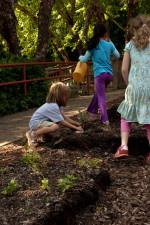 jardinage, mignon, enfant