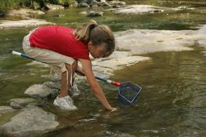 djevojka, lov, net, voda