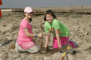 girl, scouts, help, replant, trees