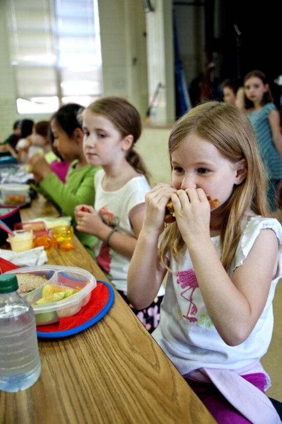 girl enjoying, wheat, sandwich, well, apple, slices, cheese, crackers