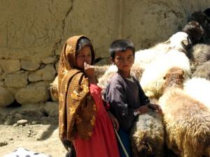 Коза, сельское хозяйство, Афганистан
