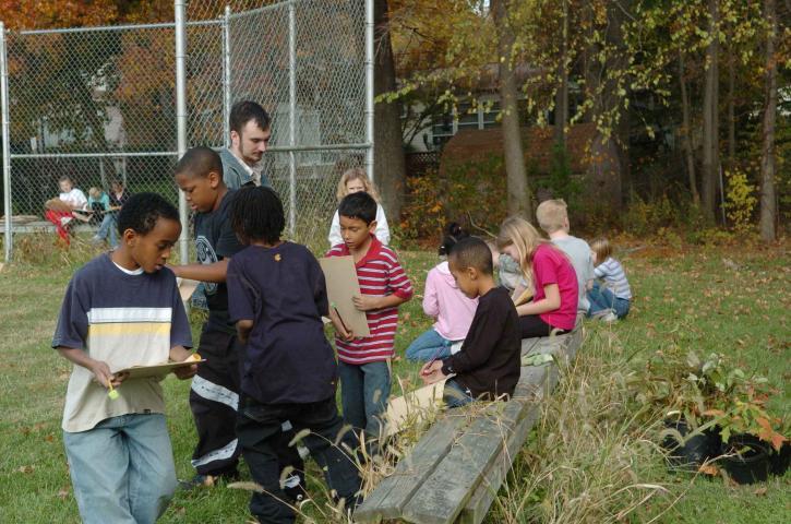 Studenten, lernen, Schulhof, Lebensräume