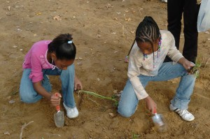 two, Afro American, girls, play, digging, ground
