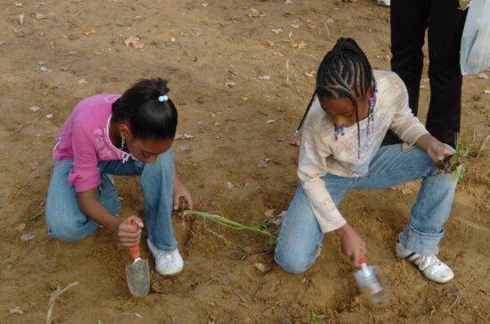 zwei, Afro American, Mädchen, spielen, graben, Boden
