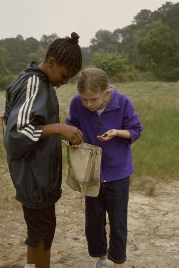 δύο νεαρά κορίτσια, βλέμμα, τσάντα, σαλιγκάρια, αλιεύονται, δίχτυα, νερό