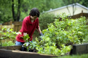 jeune garçon, le jardinage, en plein air