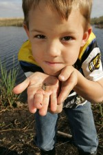 young boy, holds, small, fish