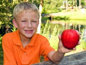 mladý chlapec, ktorý fotografoval, vonku posedenie, park, piknik stôl