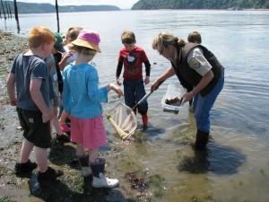 copii, tineri, de învăţare, natura, Râul