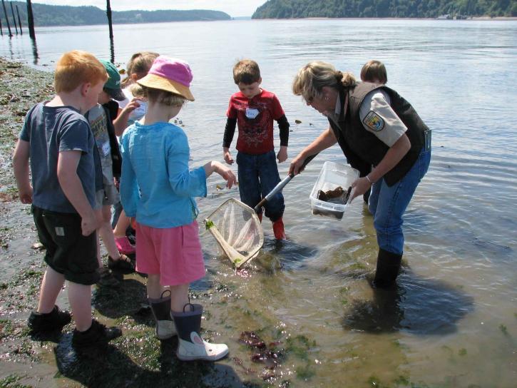 unge børn, læring, natur, floden