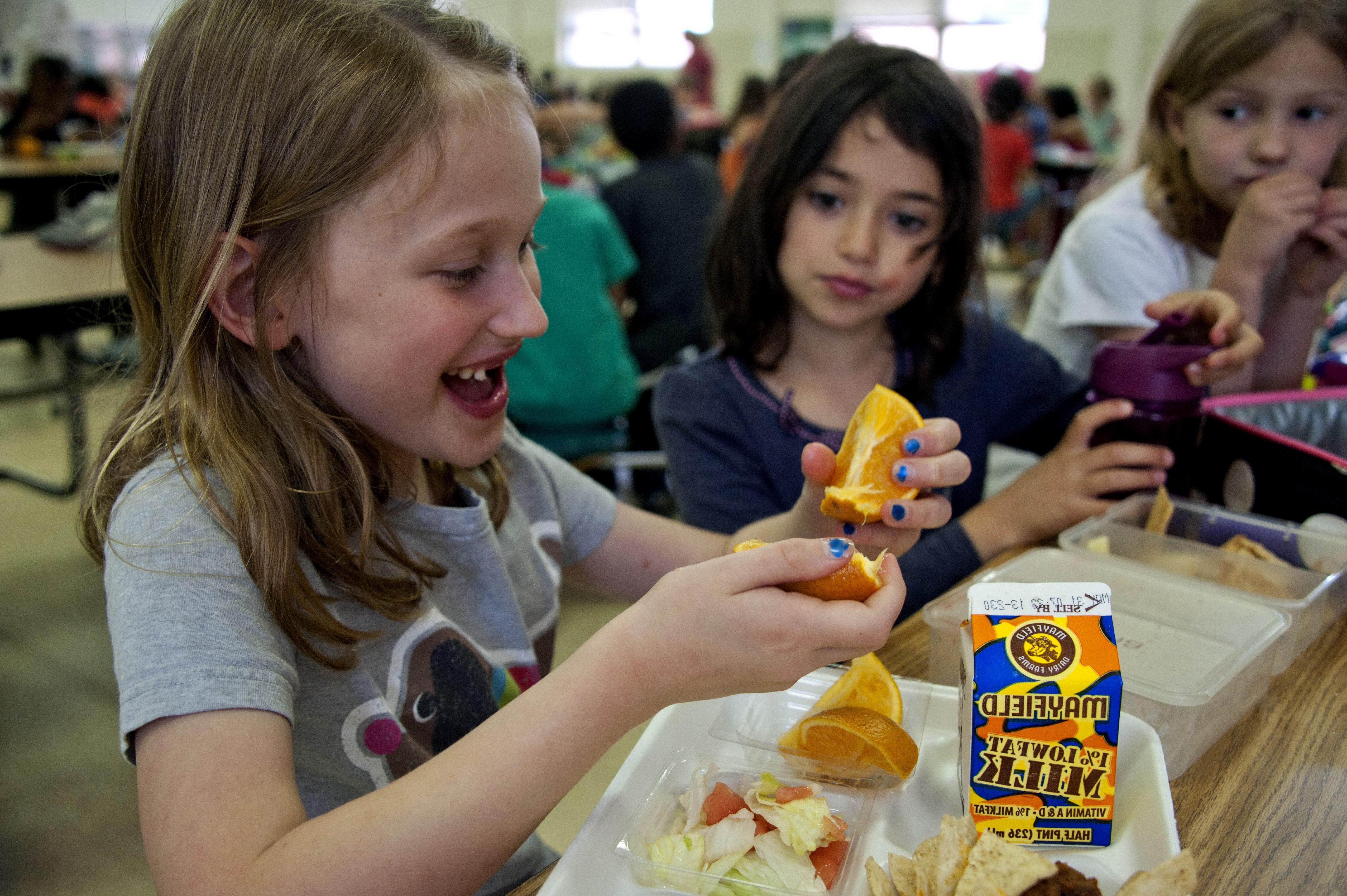 Free photograph; young, school, girl, eating, school