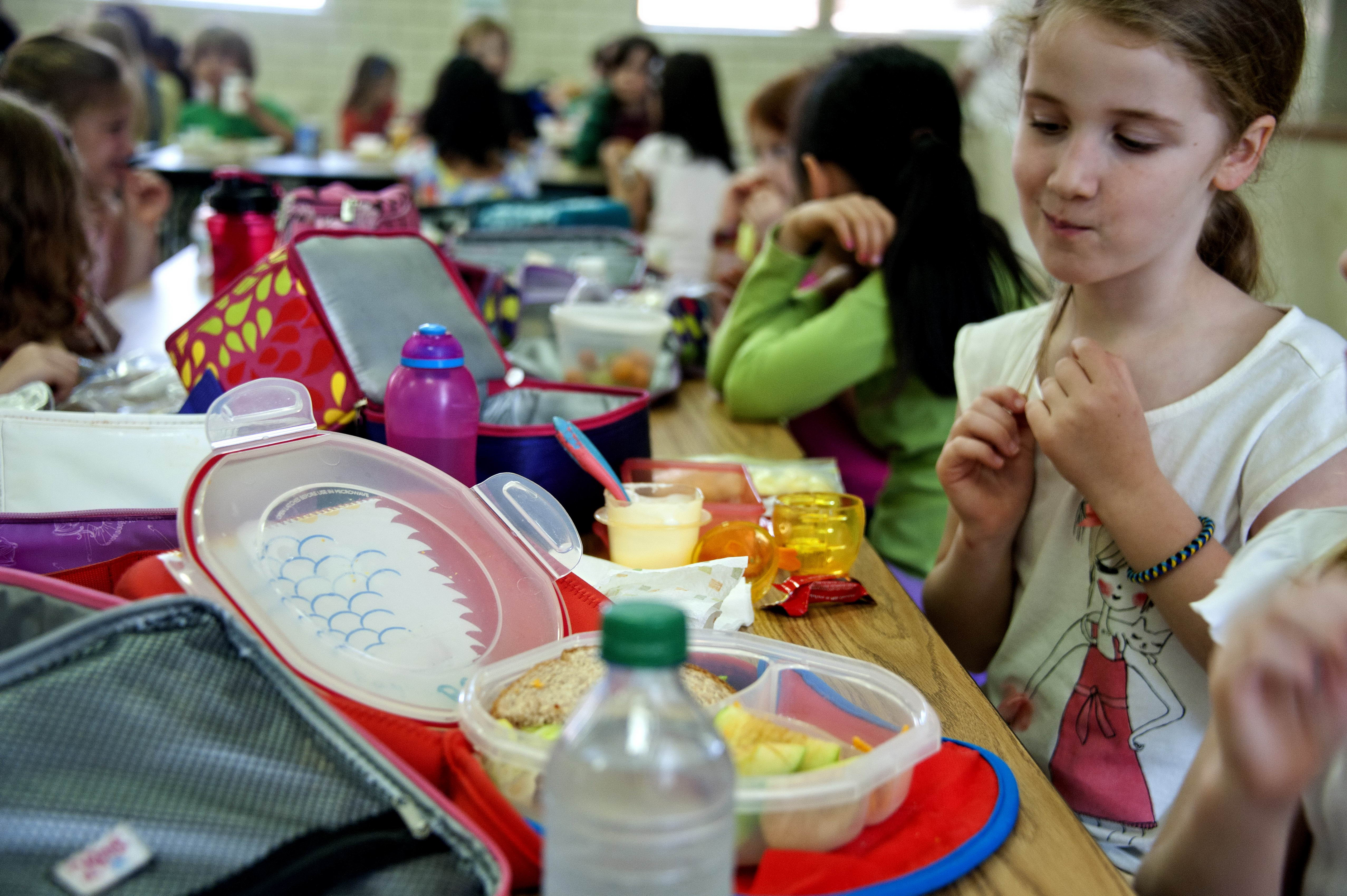 Free photograph; young, school, girl, eyeing, classmates, homemade, lunch