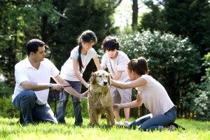 Kinder, Waschen, Hund, draußen