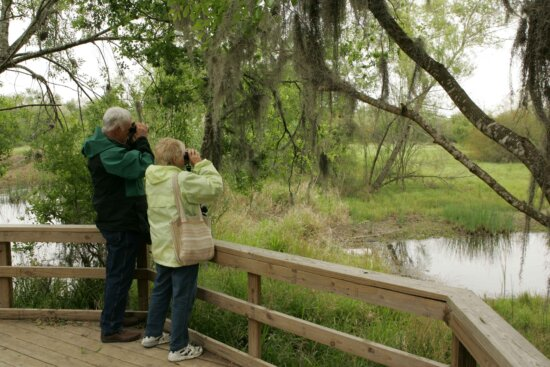 couple, come, refuge, birdwatching, opportunities