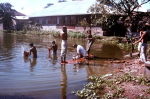 Bangladeshi, men, boys, bathing, Patuakhali, town, communal, bathing, tank