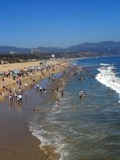 plaża, surferów